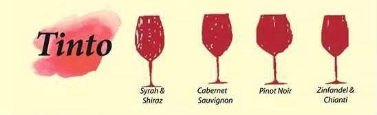 Una copa para cada vino: descubre la copa adecuada