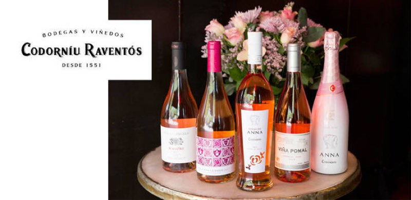 Viñas de Anna Flor de Rosa, primer rosado de Codorníu