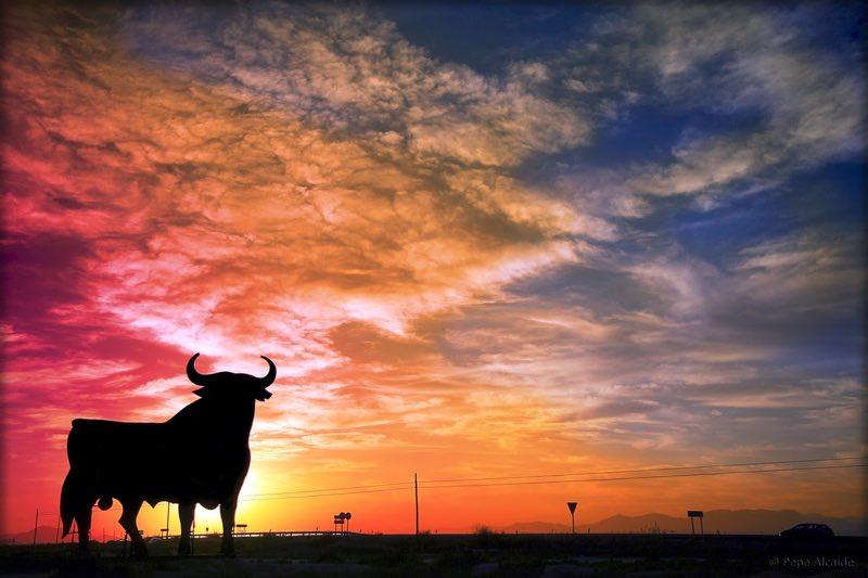 Hispania Nostra reconoce al Toro de Osborne como Patrimonio Cultural