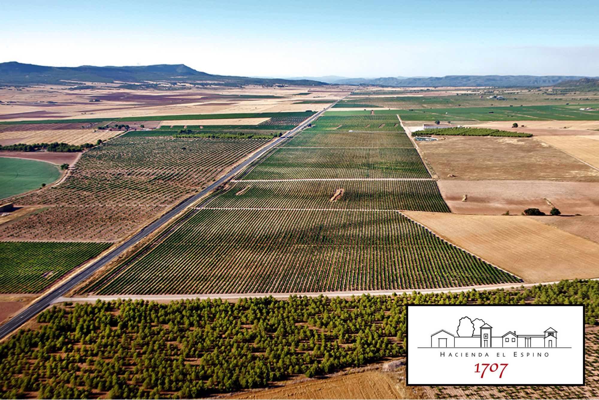 Hacienda el Espino, sueño hecho realidad de la Denominación de Origen Almansa