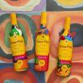 Botellas de Campo Viejo unidas al arte