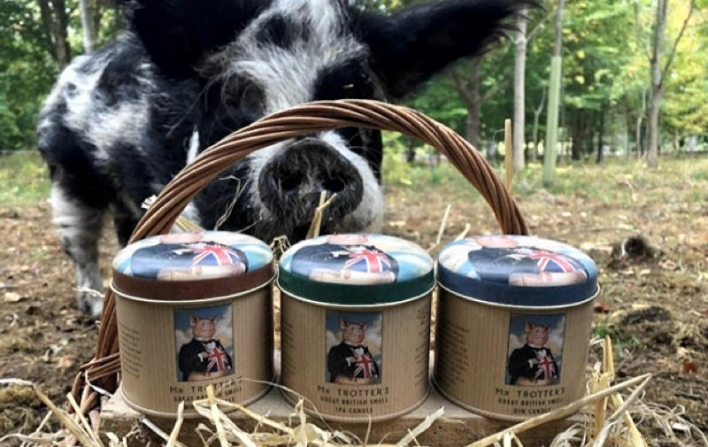 Mr Trotters candles