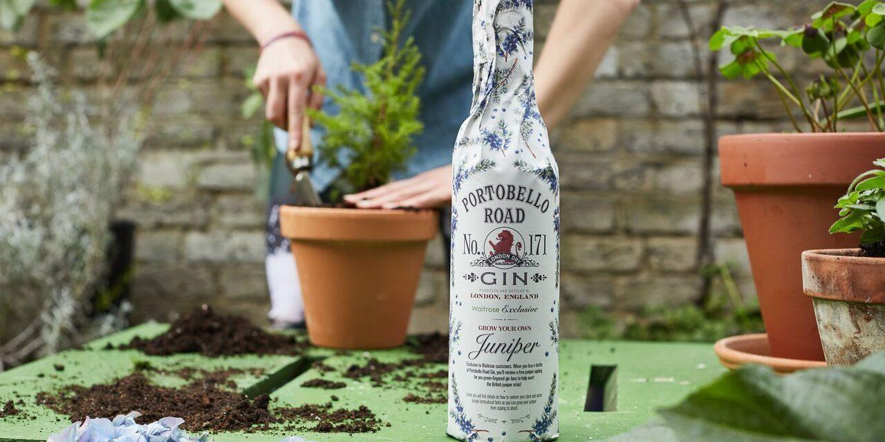 Portobello Road Gin ofrece planta de enebro en su nueva edición limitada