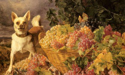 """""""Paisaje con un perro al lado de una cesta de uvas"""" (1836), de Ferdinand Georg Waldmüller"""