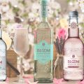 Bloom-RTD-bottles