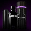 Bulldog Gin x UE Boom