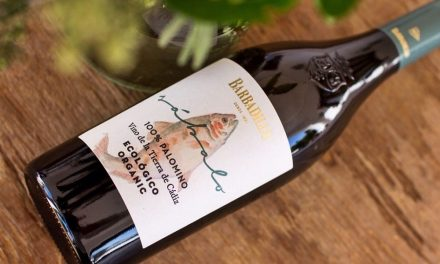Sábalo, nuevo vino blanco ecológico de Bodegas Barbadillo