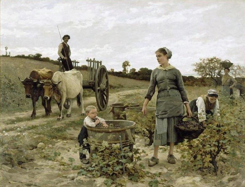 """Parcela en los viñedos de Languedoc"" (1886), de Édouard Debat-Ponsan"