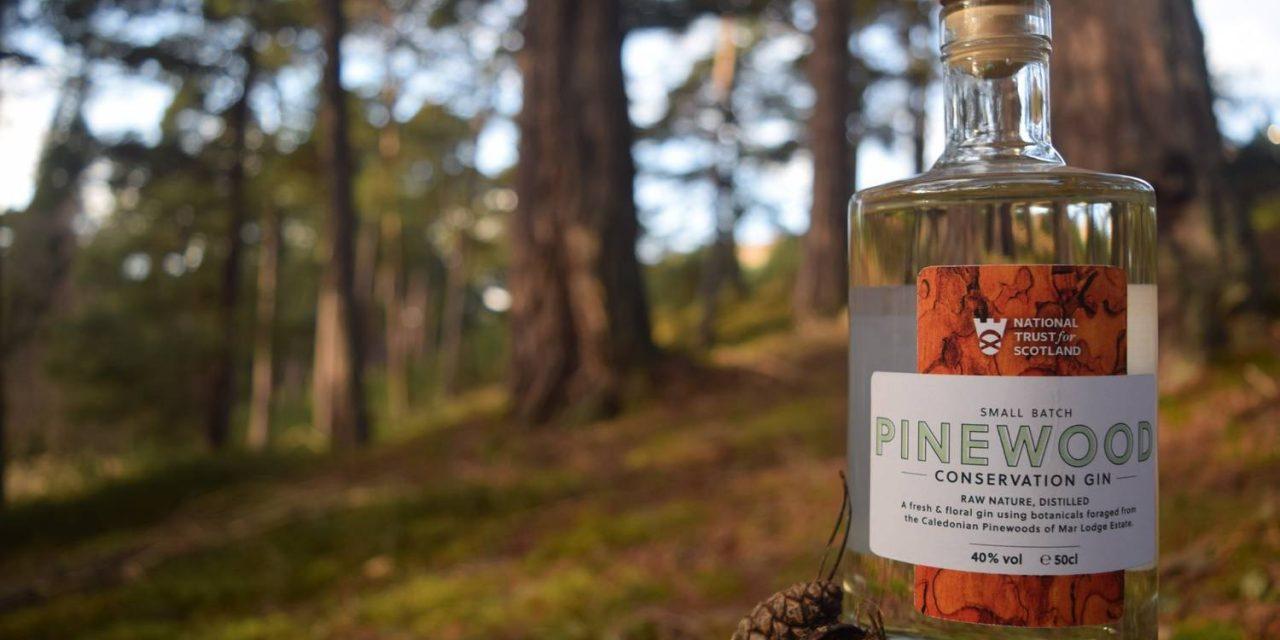 National Trust for Scotland crea su primera ginebra, Pinewood Gin