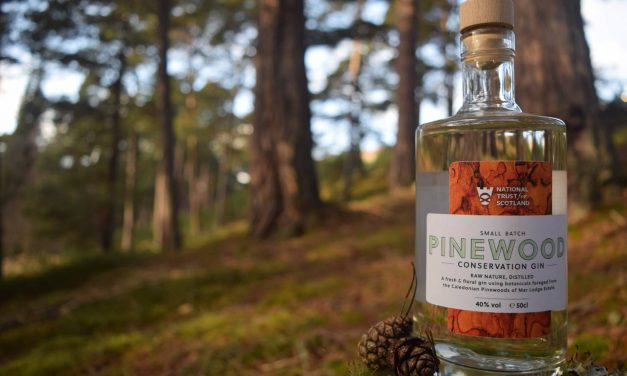 National Trust for Scotland crea su primera ginebra, Pinewood Gin
