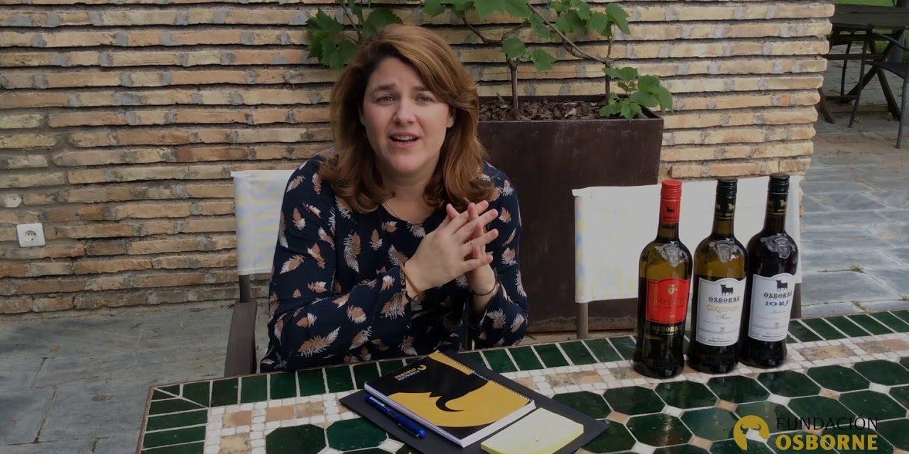 Fundación Osborne facilita formación online gratuita para profesionales y aficionados al vino durante el confinamiento por coronavirus