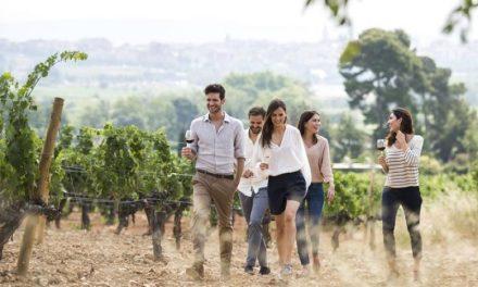 La bodega de Familia Torres en el Penedès, entre los 50 mejores destinos de enoturismo del mundo