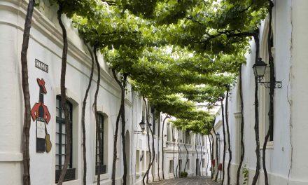 Bodegas Tío Pepe, entre mejores destinos enoturísticos del mundo para World's Best Vineyards 2020