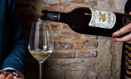 González Byass logra los mejores resultados de su historia en Decanter World Wine Awards 2020