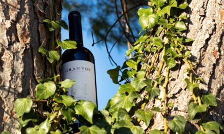 Los vinos de guarda de Viñas del Vero triunfan en los premios CINVE, Concurso Internacional de vinos y espirituosos
