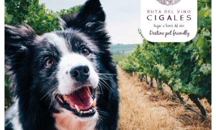 La Ruta del Vino Cigales ha sido seleccionada entre los diez destinos mejor preparados para el turismo con mascotas