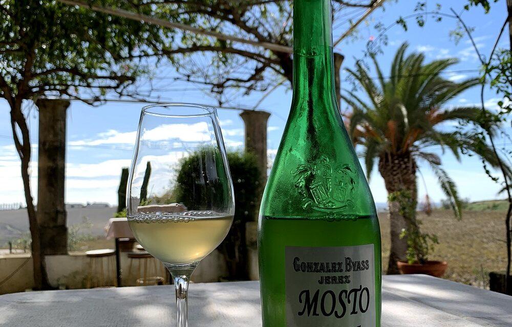 González Byass presenta en la viña el primer mosto del año