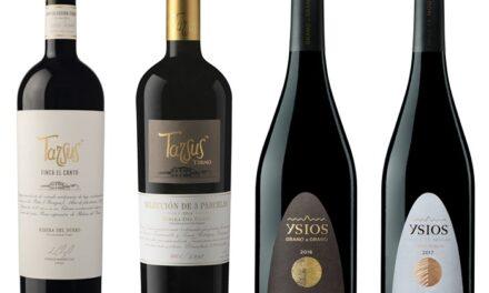Excepcionales resultados de los vinos de Pernod Ricard en la Guía Peñín 2022