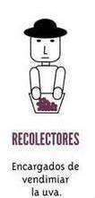 Recolectores