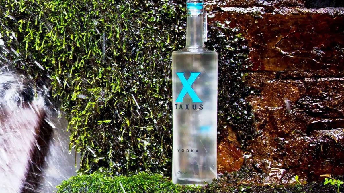 taxus-vodka-2
