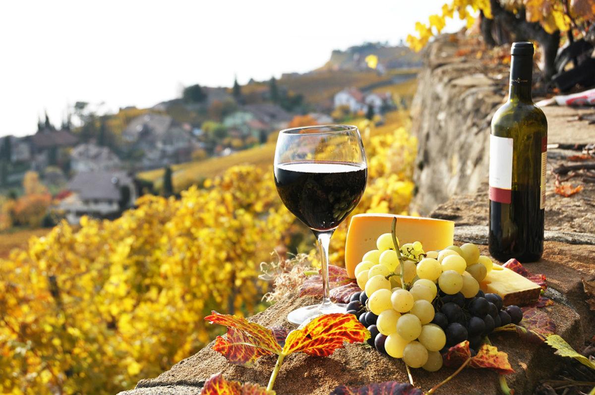 188 países ya importan vino desde España