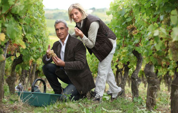 Madrid Rutas del Vino