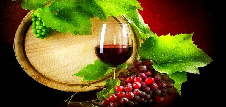 vino_europa1